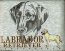 Classic Line Yellow Labrador Retriever T-Shirts