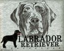 Classic Line Black Labrador Retriever T-Shirts