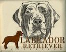 Classic Line Chocolate Labrador Retriever T-Shirts