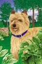 Artistic Line Cairn Terrier House Flags