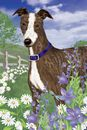 Artistic Line Greyhound Garden Flag